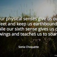 Sonia Choquette quote