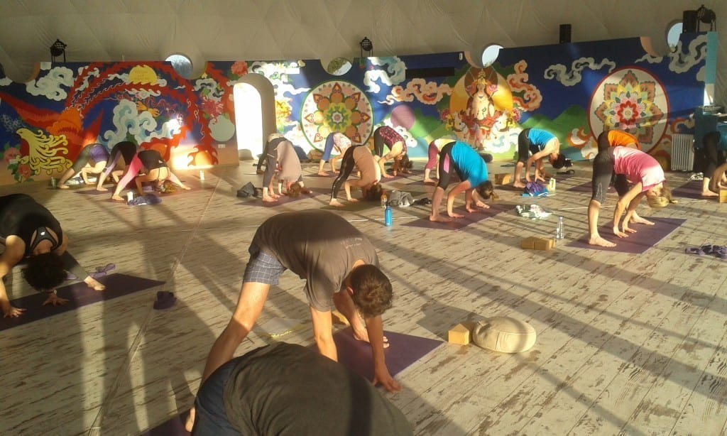 Vinyasa and Yin Yoga Teacher Training