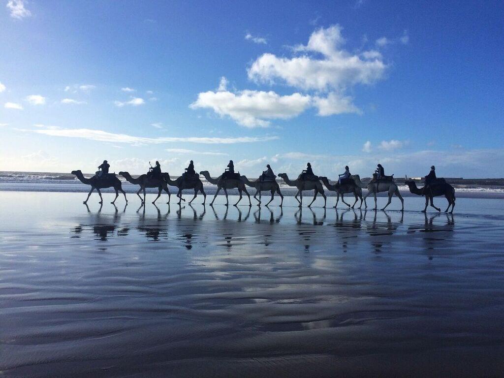 yoga retreat Marrakech September