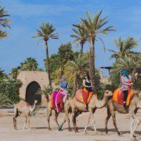 magical marrakech