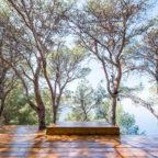 soulshine yoga retreat