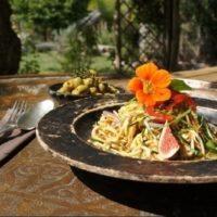 vegetarian retreats in Europe