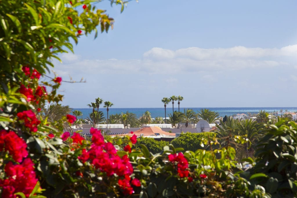 Christmas Yoga and Pilates retreat in Fuerteventura, 23rd – 30th December