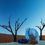 Namaste yoga safari