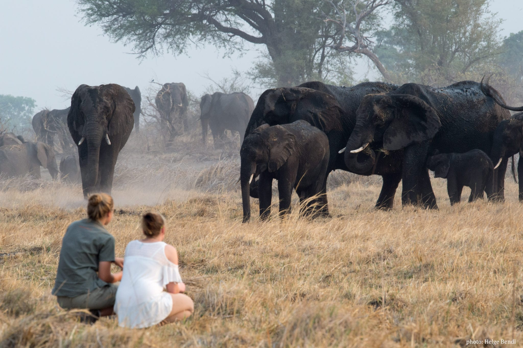 Transformational Yoga Wildlife Retreat, Namibia 5th – 11th December